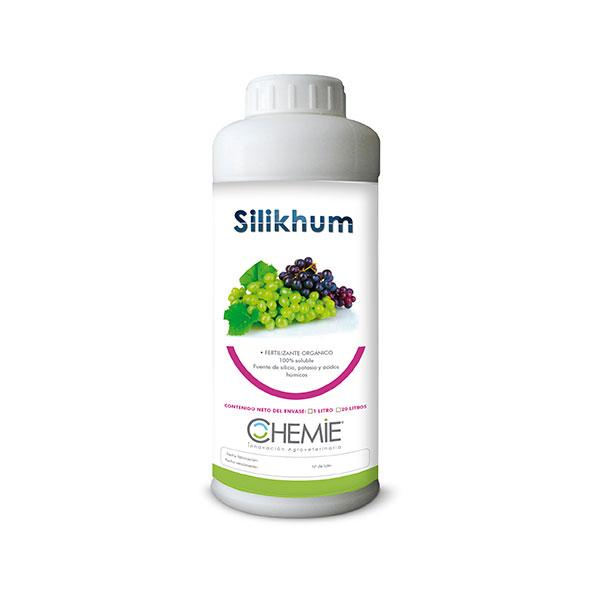 Silikhum