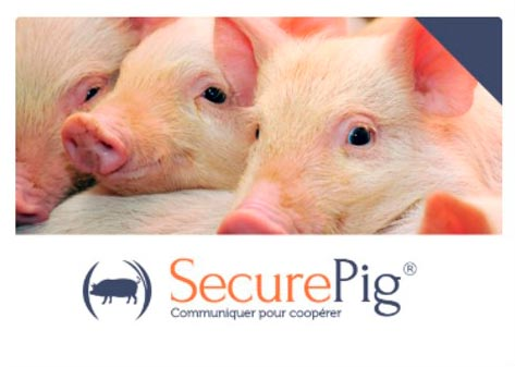 SecurePig Chemie